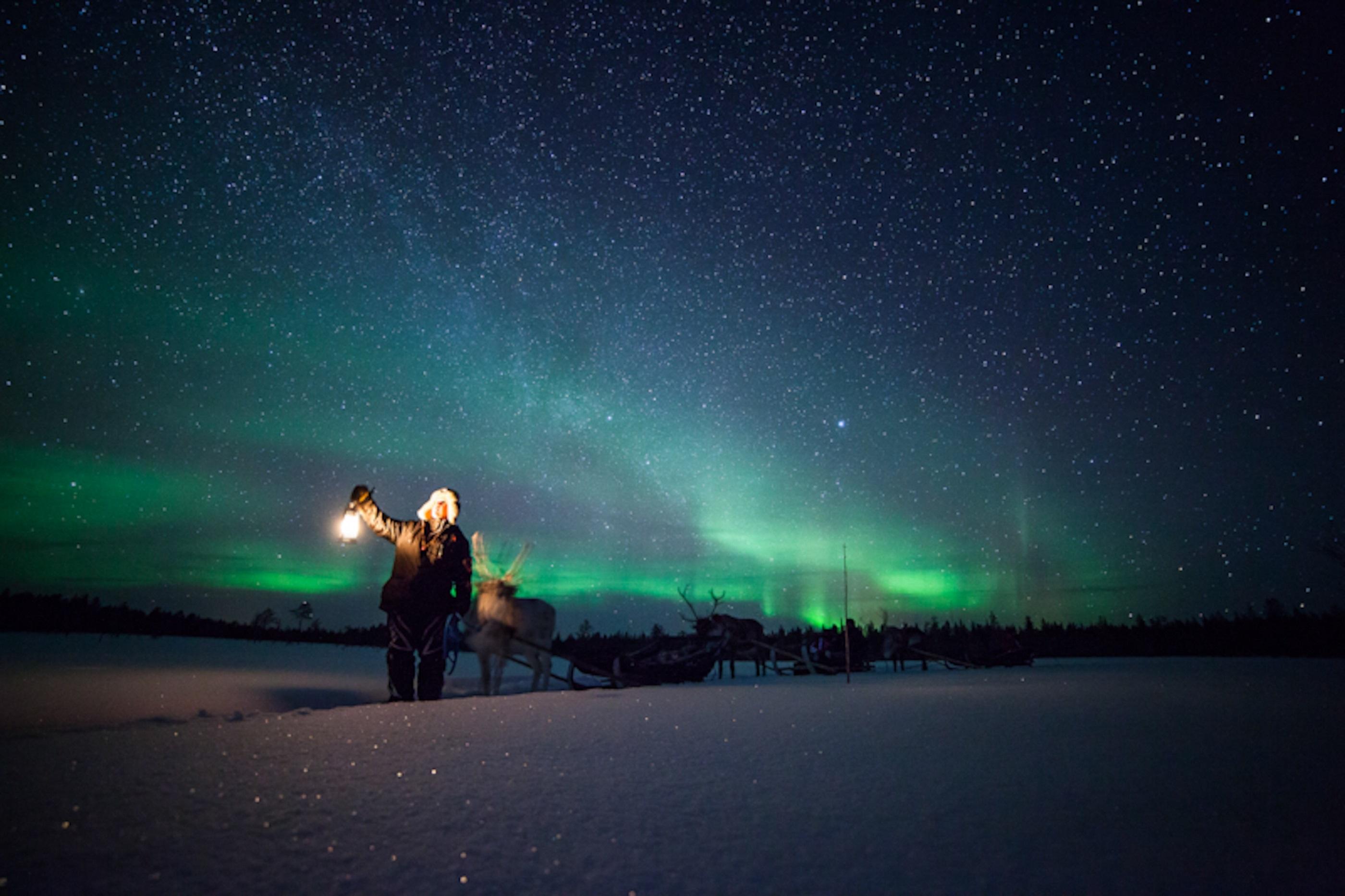 Credit Antti Pietikainen 310 3