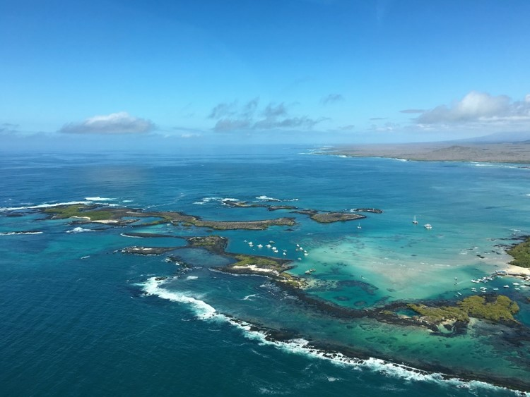 Galapagos 3 Neotropic Expeditions