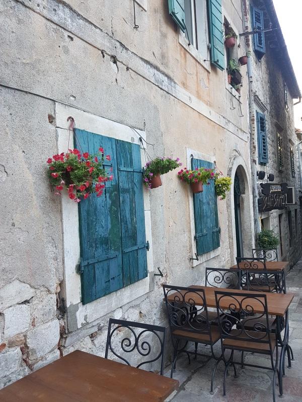Montenegro Amy WG 2
