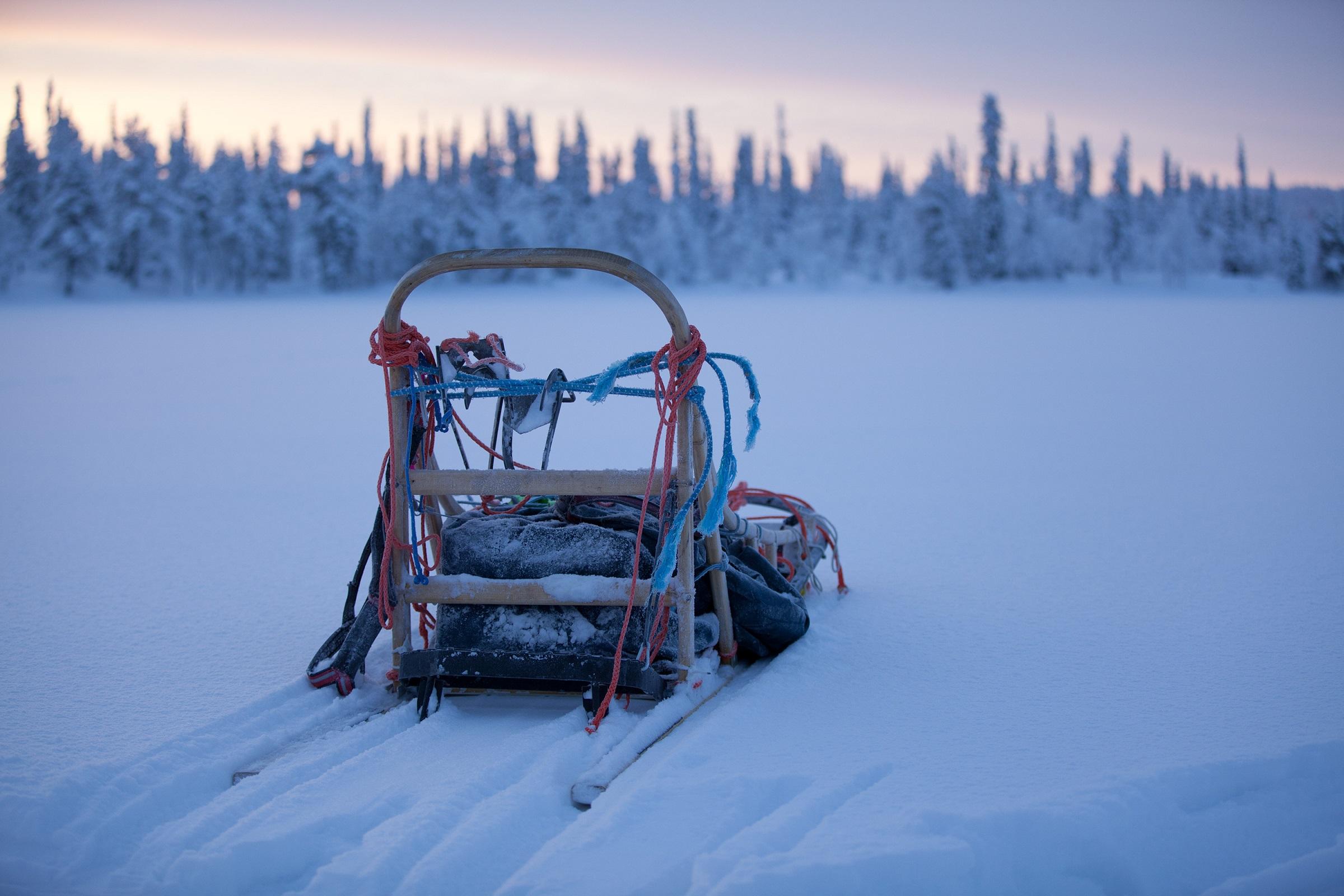 Please credit Antti Pietakainen 2012 46