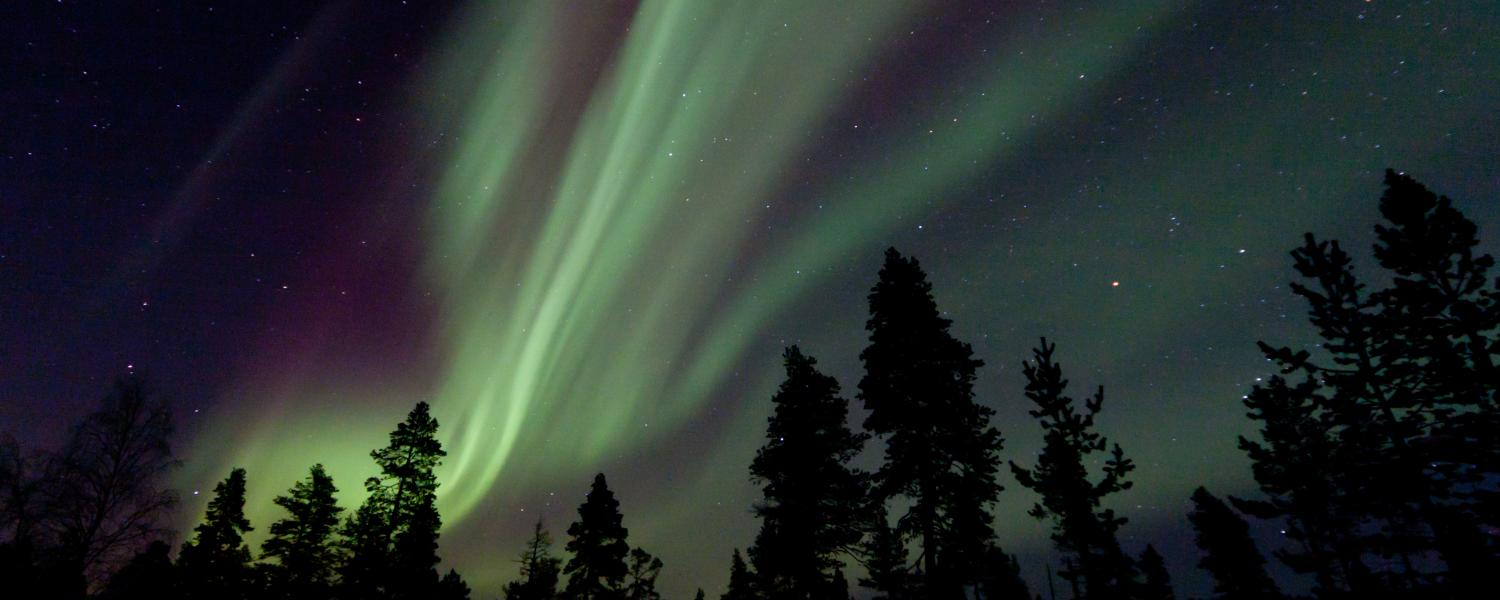 Menesjarvi Half-Term Northern Lights Adventure