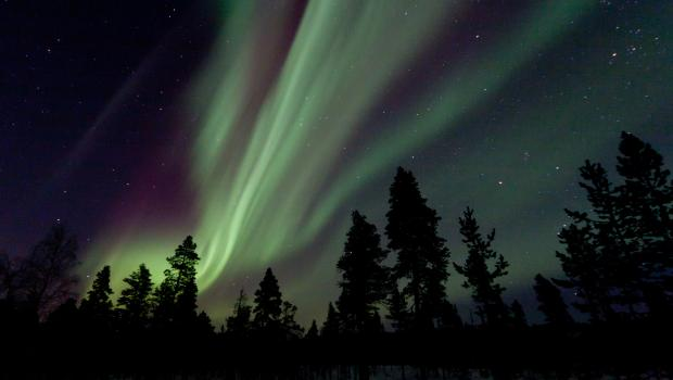 Menesjärvi Half Term Northern Lights Adventure