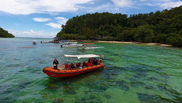 The Best of Borneo